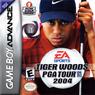 tiger woods pga tour 2004 rom