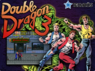 double dragon 3 rom
