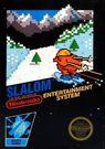 slalom rom