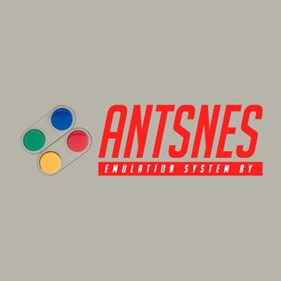 AntSnes 10