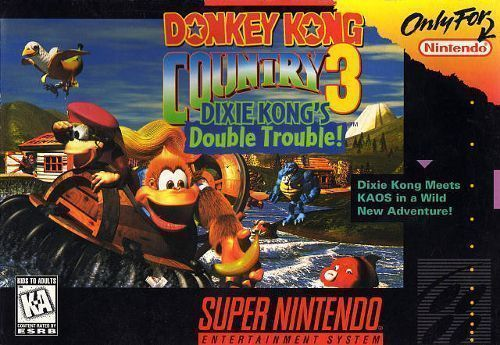 Donkey Kong Country 3-Dixie K Double Trouble ROM - Super Nintendo